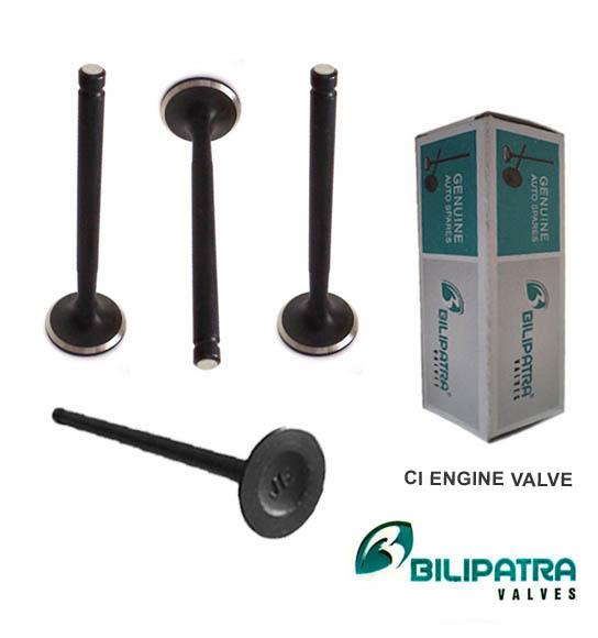 Black Engine Valve