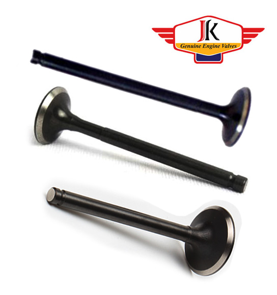 Cast-Iron Engine Valve Manufacturer Rajkot