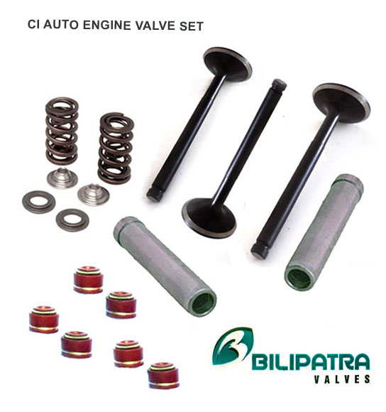 Engine Auto Parts Valve Guide-  Oil Seal Set